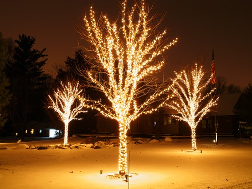 Landscape and Holiday Lighting