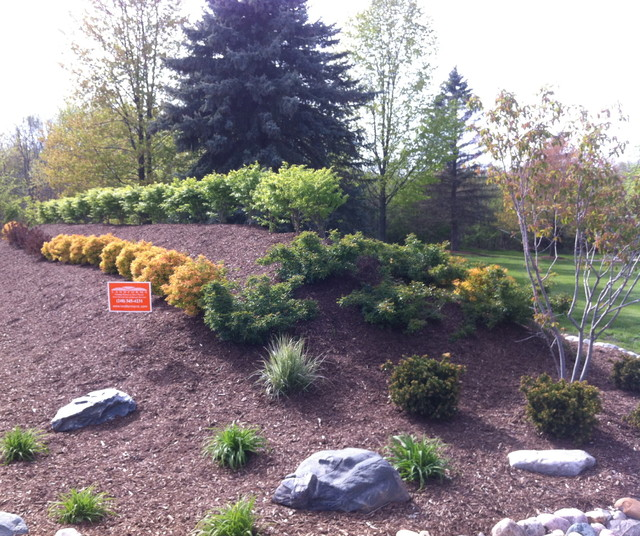 Landscape Berm in Brighton Michigan traditional-landscape