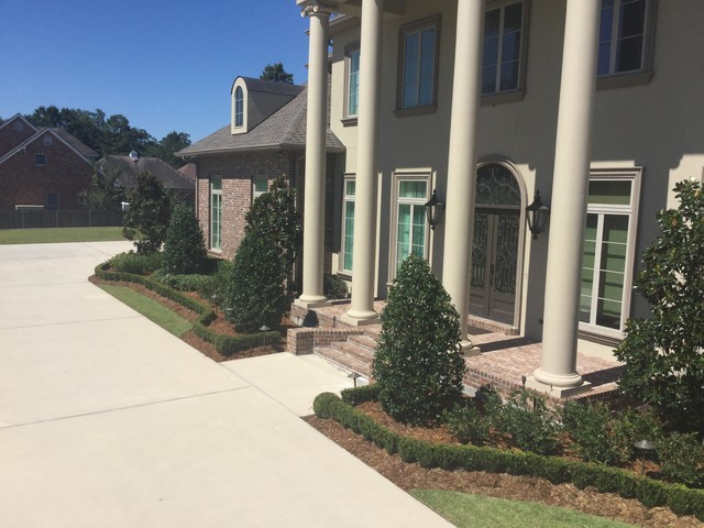 Design ideas for a landscaping in New Orleans.