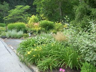 Landscape Design Wayne, PA