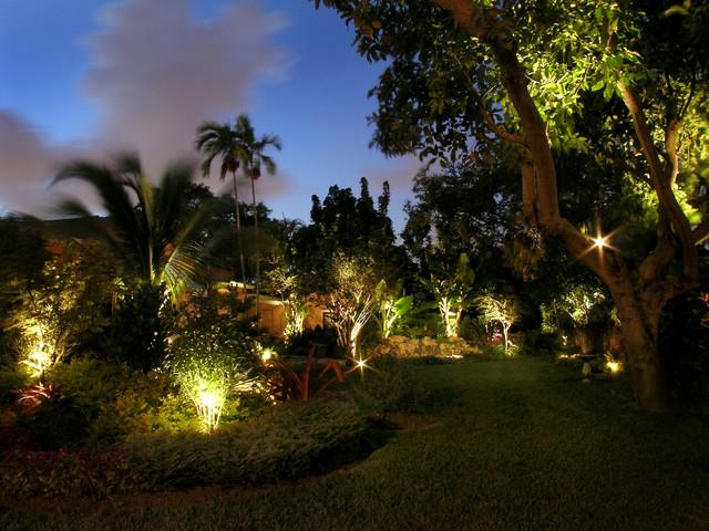 Landscape Lighting Tropical Landscape Miami By Bright Light Designs