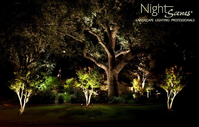 Landscape Lighting Tropical Landscape Austin By