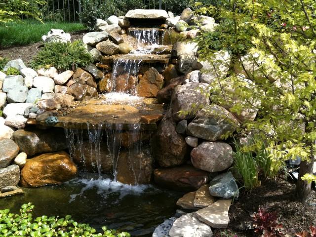 landscape plants and design traditional-landscape