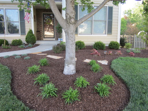Front Yard Landscaping Under Trees : Planting flowers around oak trees the best ideas