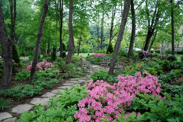Landscaping Highlights Traditional Landscape Dc