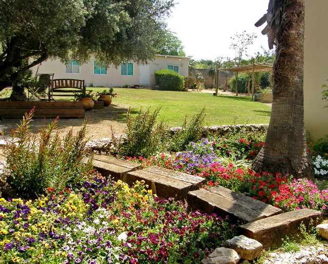 landscaping in an old village in israel mediterranean landscape
