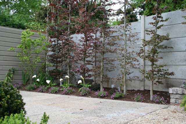 Landscaping in Dublin Ireland contemporary-landscape