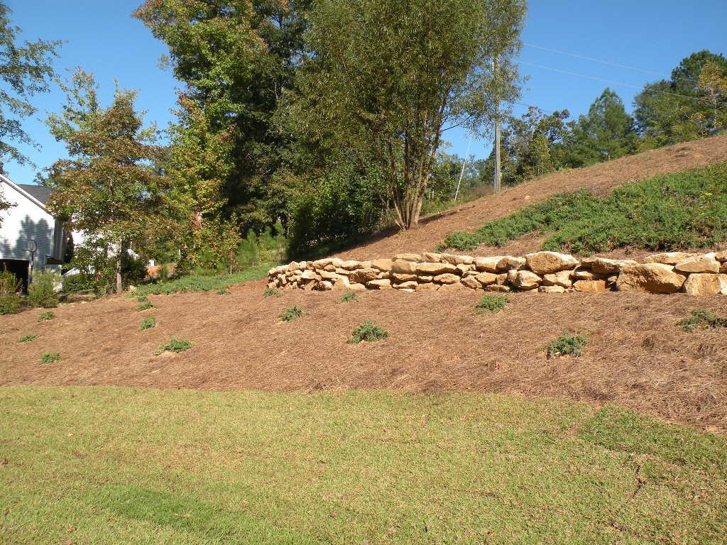 Landscaping Renovation