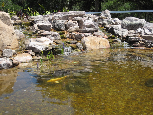 Large koi pond with grey garden boulders and ledge rock for Fish pond rocks