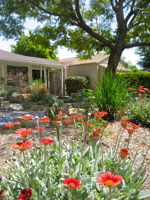 Lawn Less Front Yard Design By Shirley Bovshow Of