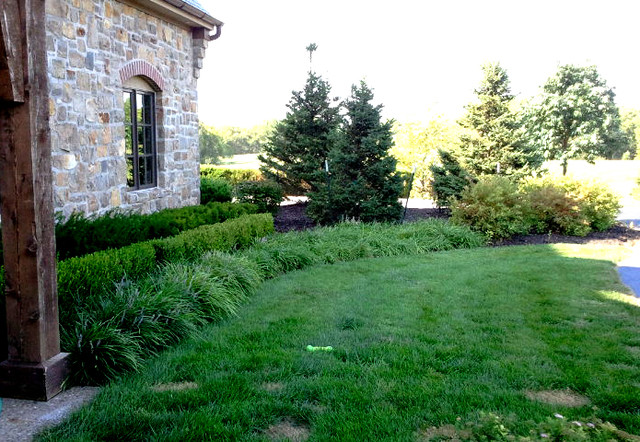 Layered Landscape Planting Traditional Landscape