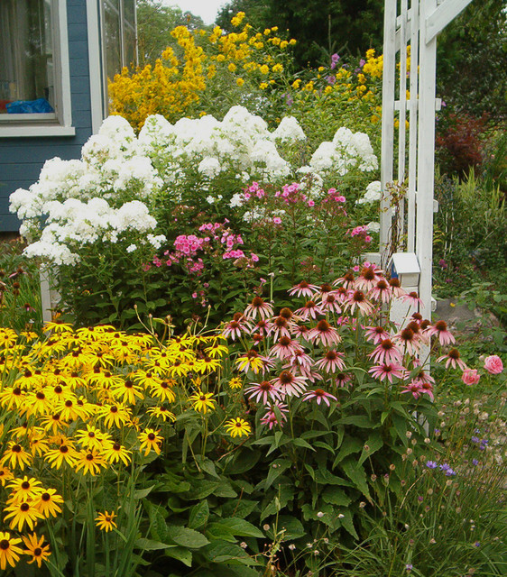Layers of bloom traditional landscape toronto by - Flowers for the front yard ...