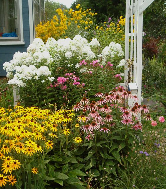 Layers Of Bloom Classique Jardin Toronto Par