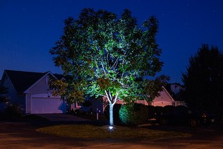 LED Outdoor and Landscape Lighting - Contemporary - Landscape - st louis - by Super Bright LEDs