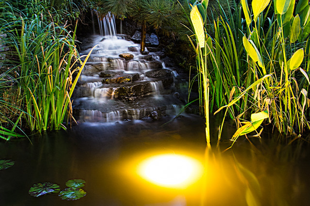 Led Water Feature Pond And Waterfall Landscape Lighting Asian Landscape St Louis By