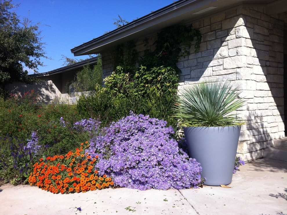 Inspiration for a contemporary landscaping in Dallas.