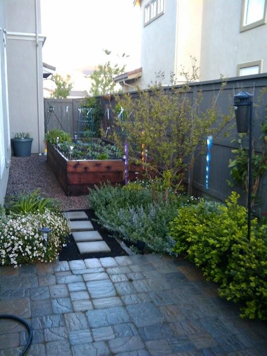 Photo of a mediterranean side yard gravel vegetable garden landscape in Sacramento.