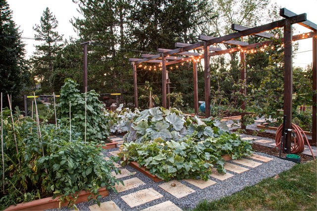 this is an example of a traditional vegetable garden landscape in denver