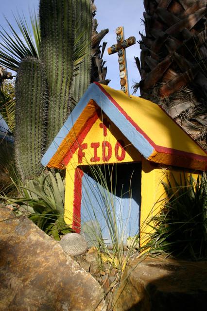 Livin' Cheap in Baja eclectic-landscape