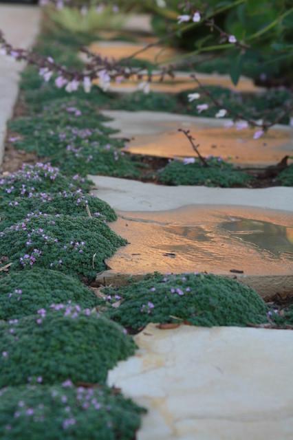 living gardens landscape design coastal garden - Living Gardens Landscape Design