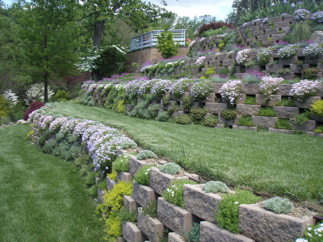 Living walls a terraced garden in pikesville contemporary landscape