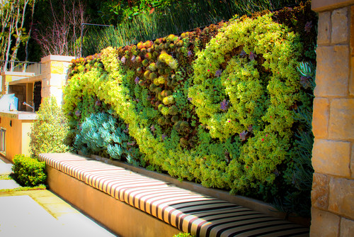 Living Wall Decor: Ideas + Inspiration {Guide} | INSTALL-IT-DIRECT