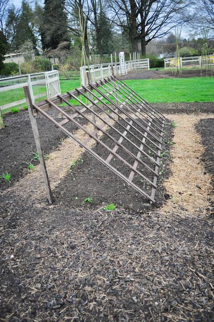 Longwood Gardens Vegetable Garden - Traditional - Landscape - philadelphia - by Amy Renea