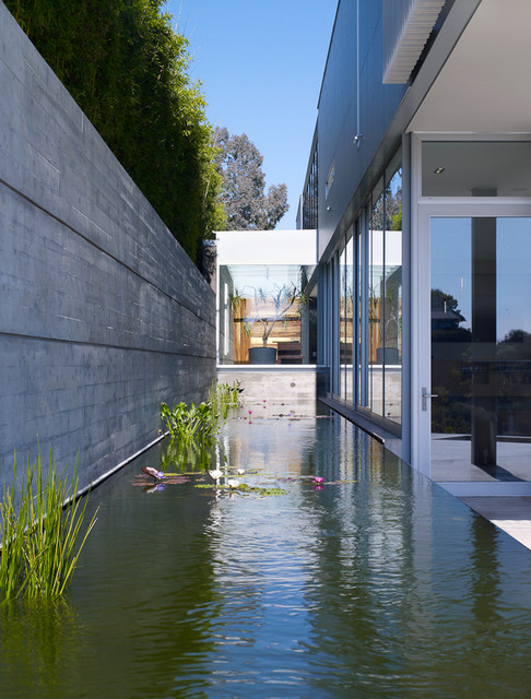 Los Angeles contemporary-landscape
