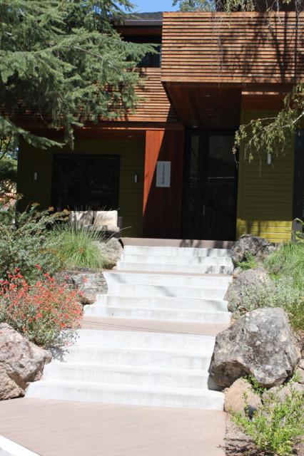 Los Gatos Front Yard contemporary-landscape