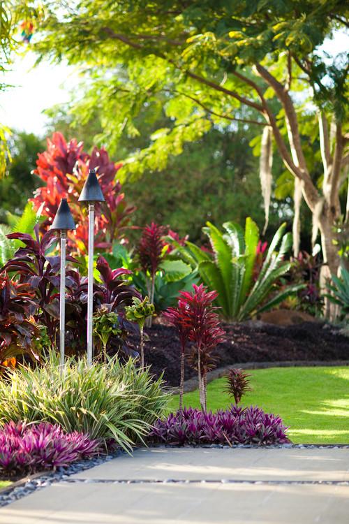 Love the purple-fushia plant, What´s it´s name? Thank you