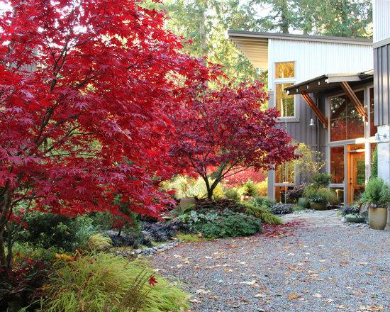 Contemporary Pacific Northwest Landscape Design Ideas