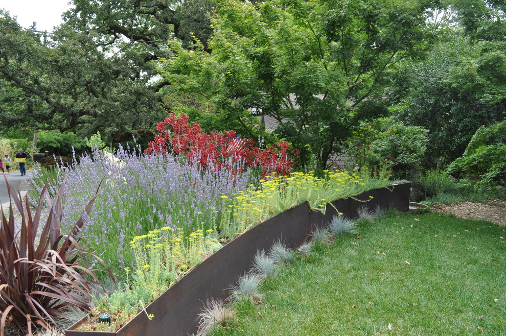 This is an example of a contemporary backyard landscaping in San Francisco for summer.