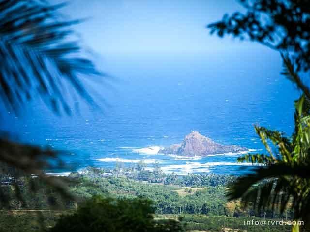 Maka'alae   Luxury Hawaiian Estate tropical-landscape