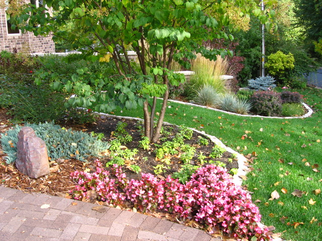 Maple grove lakefront property traditional landscape for Lakefront landscaping photos