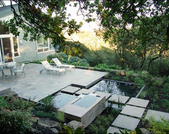 Marin Water Feature modern-landscape