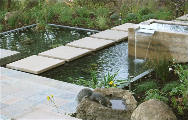 Marin water feature for Modern koi pond design