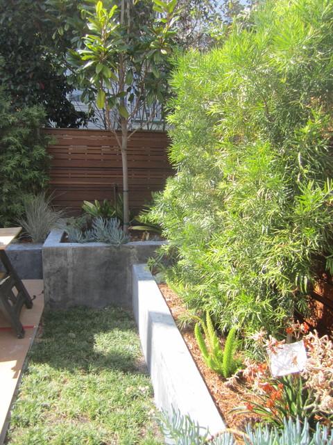 Marina backyard contemporary-landscape