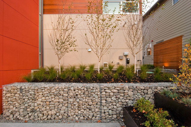 Massena residence contemporary landscape seattle for Landscaping rocks seattle