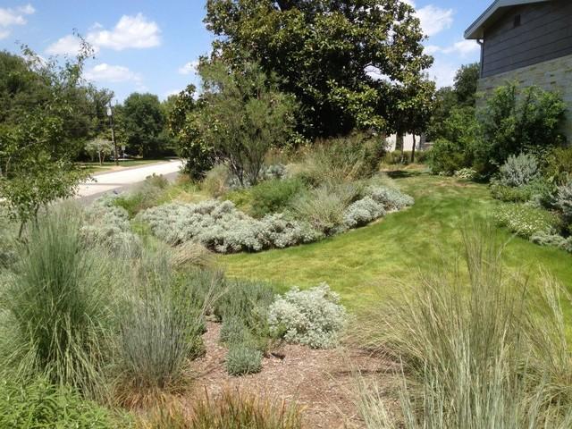 Master Gardener on St. Michaels, Dallas modern-landscape