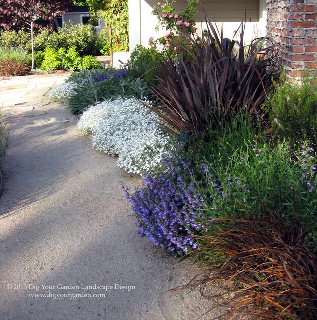 Mediterranean Style Landscaping: Mediterranean Garden In San Anselmo, CA
