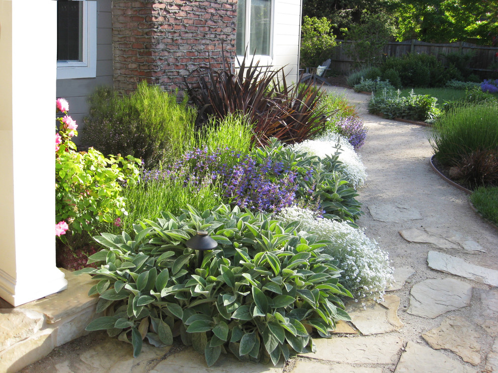 Photo of a huge mediterranean partial sun front yard stone garden path in San Francisco for spring.
