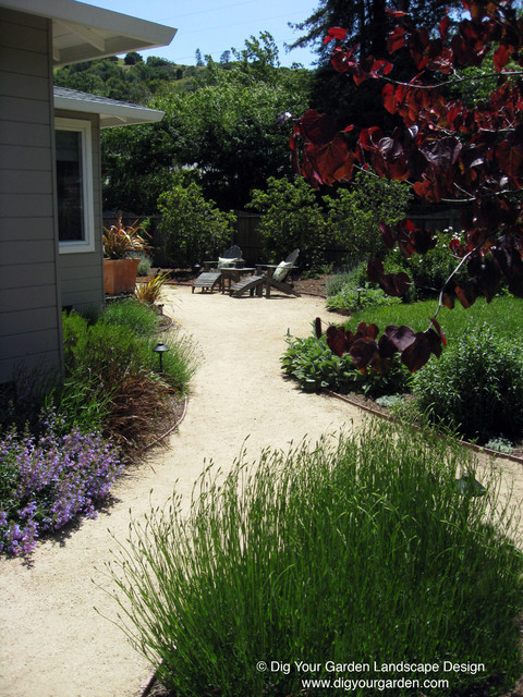 Mediterranean garden with curving pathways of DG and