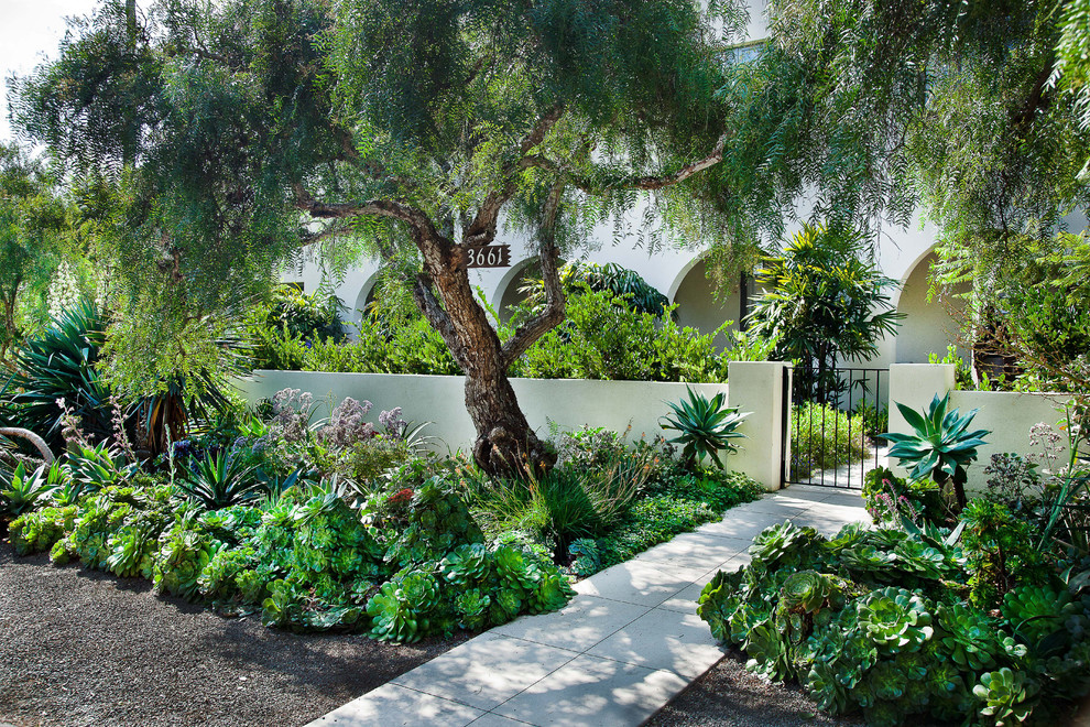 This is an example of a mediterranean courtyard landscaping in San Diego.