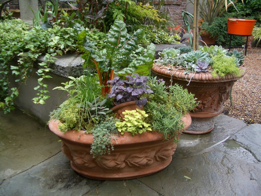 Photo of a mediterranean landscaping in Vancouver.