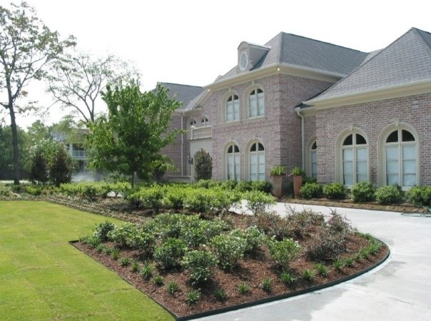 This is an example of a traditional landscaping in Houston.