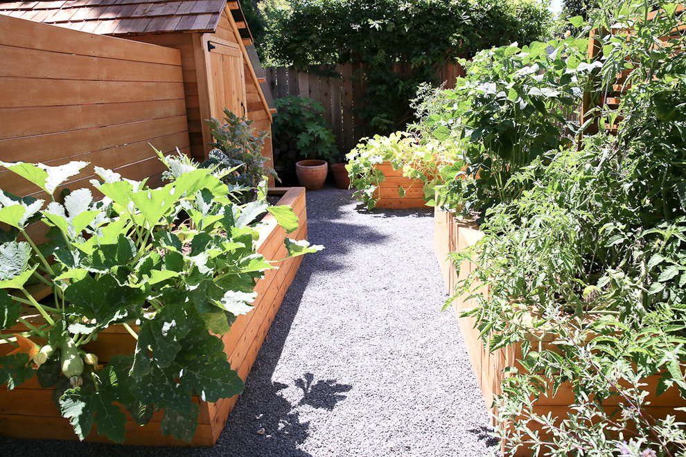 This is an example of a mid-sized transitional full sun backyard gravel landscaping in San Francisco for spring.