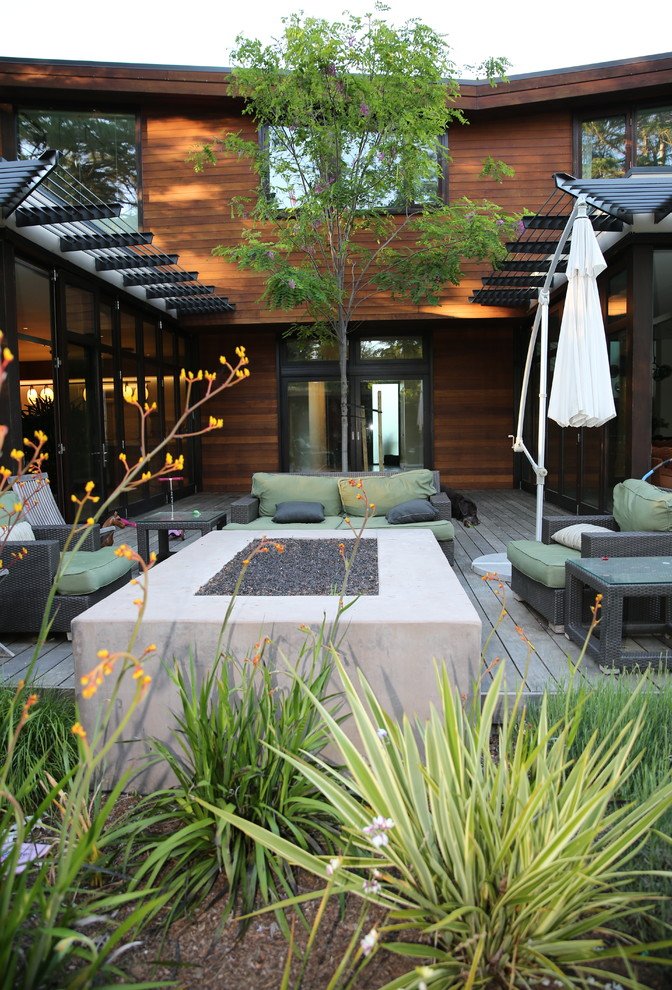Photo of a large contemporary full sun landscaping in San Francisco.