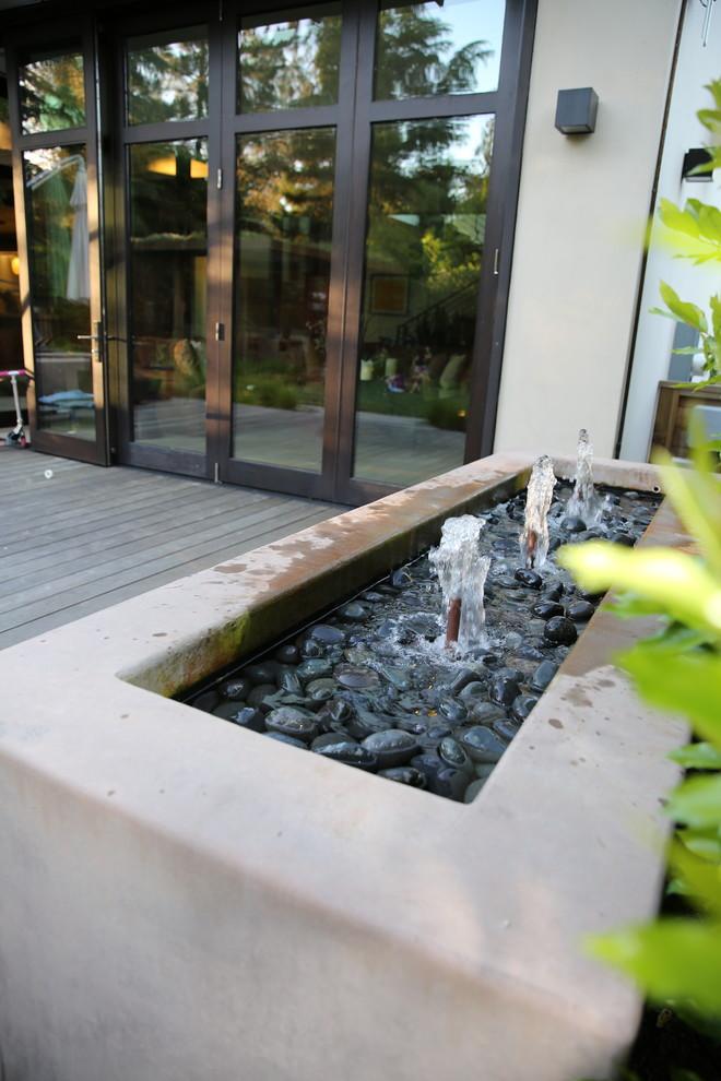 Inspiration for a large contemporary full sun landscaping in San Francisco.