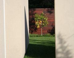 Menlo Park Modern 07 (Design by Dumican Mosey Architechts) contemporary-landscape