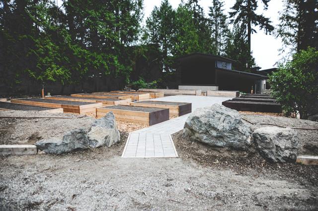 mercer island production garden and native landscape in process modern garten seattle. Black Bedroom Furniture Sets. Home Design Ideas